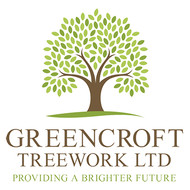 Greencroft Treework